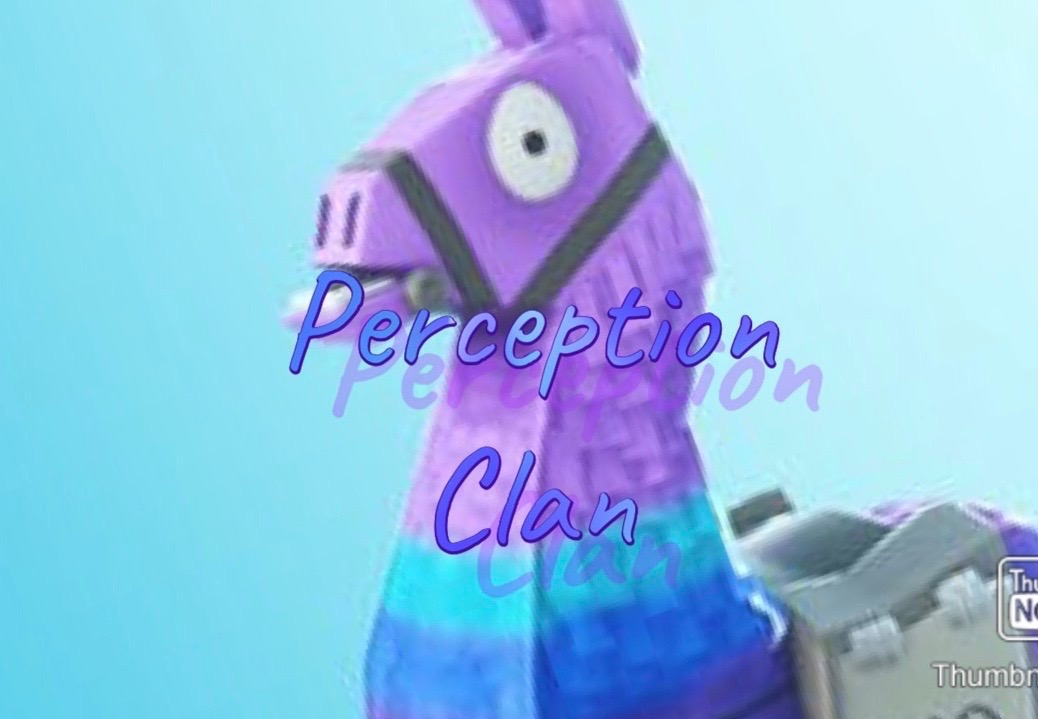 Perception Clan Fortnite Clan